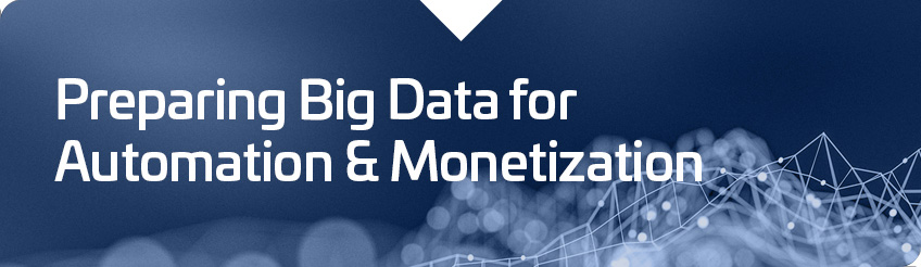 Preparing Big Data for Automation and Monetization